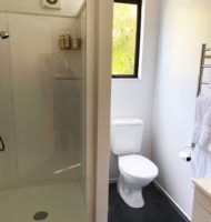 Star-Vine-Bathroom